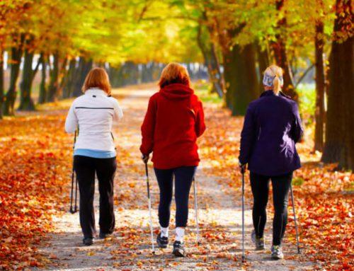 Das richtige Nordic Walking – So gehen Sie sich schlank